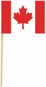 2 PC PAPER CANADIAN FLAG PICK