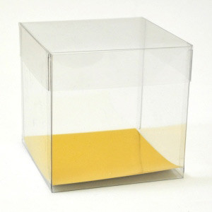 "3.75X3.75X3.75""/ 2PC CLEAR CUPCAKE BOX"