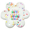 17729-A-HAPPY-BIRTHDAY-COOKIE-CUSTOM-MCCALLS.jpg