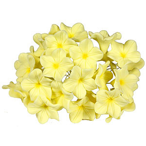 GUMPASTE FILLER FLOWER YELLOW WIRE