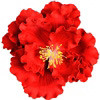 "6 PC 5 1/2"" RED GUM PASTE PEONY"